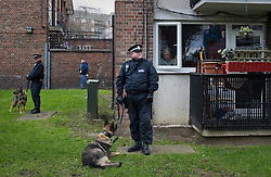 © Ben Cawthra. 28/01/2012. A police dog handler stands with his dog in front of a residential building, watched by a smoking woman from her flat  before the Barclays Premiership football match between QPR and Chelsea. Security has been heightened due to tensions between the clubs following an on field alleged racial incident. Photo credit : Ben Cawthra
