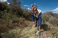 Federico Benavides, responabile of tourism in the remote town of Lares, studying the ancient route that passed from Ollantaytambo to them to reach the forest