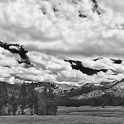 Dana Meadows Tioga Pass - Yosemite - HDR - Infrared Black & White