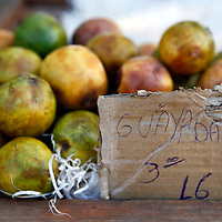 Central America, Cuba, Santa Clara. Guayaba, or guava fruit at a local farmer's market in Santa Clara, Cuba.