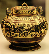 Pyxis (Cosmetic box) with lions, a goat, a bull and a swan. Middle Corinthian, about 600-575 BC