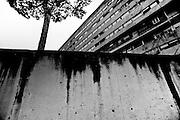 Un particolare di un muro in cemento armato  nel quartiere periferico del Corviale, Roma<br /> 24 gennaio  2014 . Daniele Stefanini /  OneShot