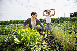 Mid adult man with his son working in community garden, Bavaria, Germany
