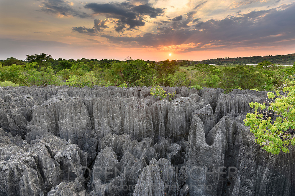 Karstlandschaft, Tsingy, Madagaskar<br /> <br /> Karst landscape, Tsingy, Madagascar
