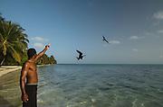 Magnificent Frigatebird (Fregata magnificens) & Evaristo Muschamp<br /> MAR Alliance<br /> Halfmoon Caye<br /> Lighthouse Reef Atoll<br /> Belize<br /> Central America