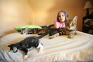 Middletown, NY - Cats, kittens and a 10-year-old girl relax on a bed on July 4, 2009.