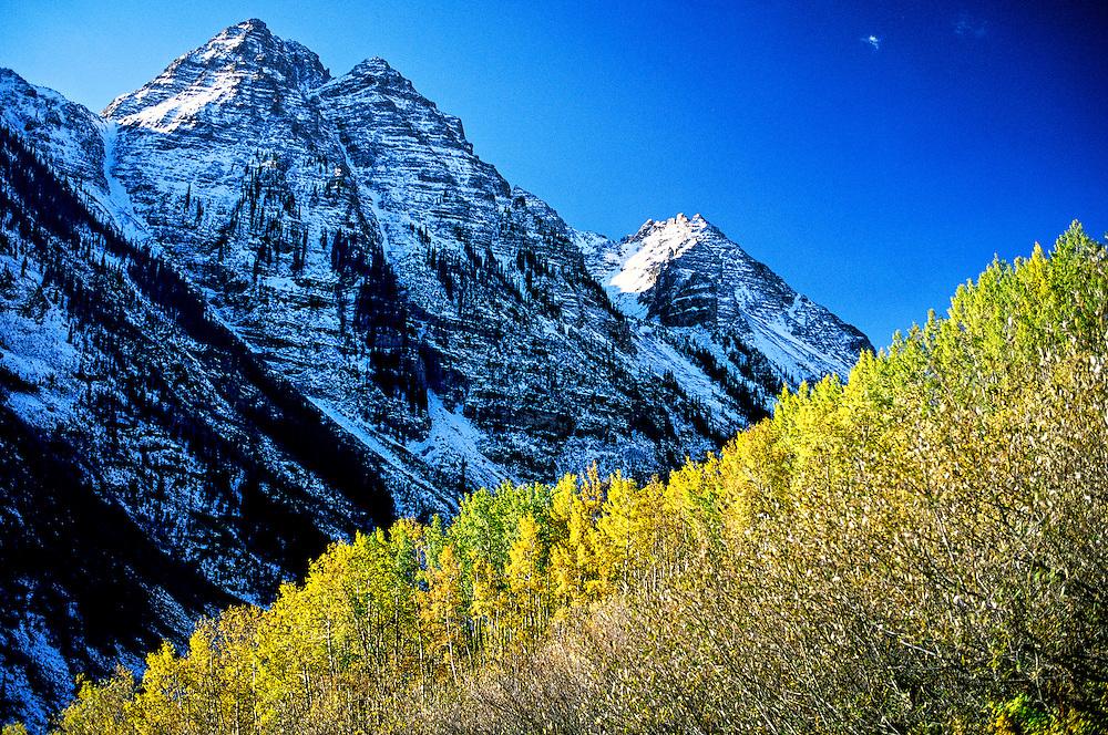 Fall foliage near Maroon Bells, outside Aspen, Colorado USA