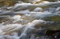 Ohanapecosh River rapids just outside Mount Rainier National Park in the Gifford Pinchot NF, WA, USA