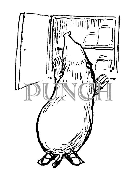 (Mole checking larder- illustration)