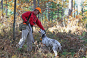 A Ruffed grouse hunter in northern Wisconsin affectionately pets his old English Setter for a job well done.