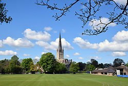 Norwich Cathedral, UK May 2019