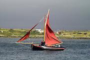 Galway Hooker, traditional Irish sailing boat, preparing for Roundstone Regatta, Connemara, Ireland, July 2004