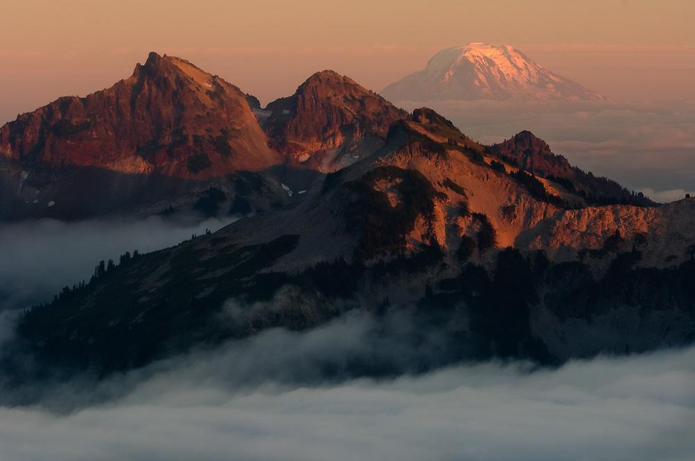 Mount Rainier National Park, Washington, USA. Evening light view from the Panaorama Point area.