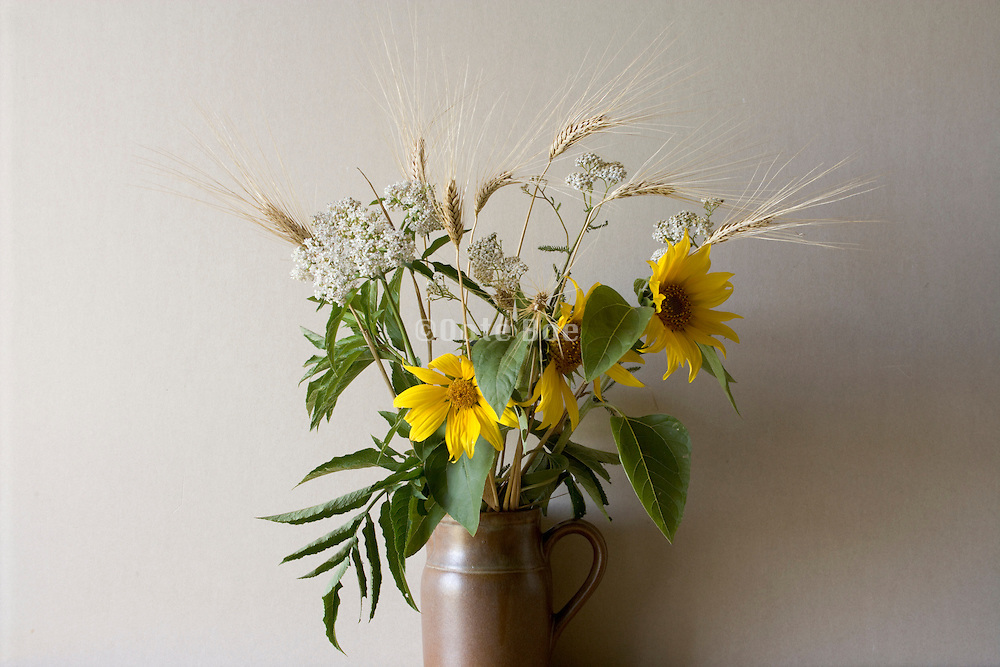 still life with yellow flowers, wheat and wild flowers
