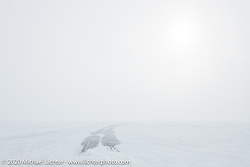A whiteout as we drove 30-miles across Lake Baikal on the meter-thick ice after the Baikal Mile Ice Speed Festival. Maksimiha, Siberia, Russia. Sunday, March 1, 2020. Photography ©2020 Michael Lichter.
