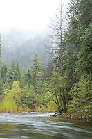 Scenic image of the Merced River flowing through Yosemite National Park, CA.