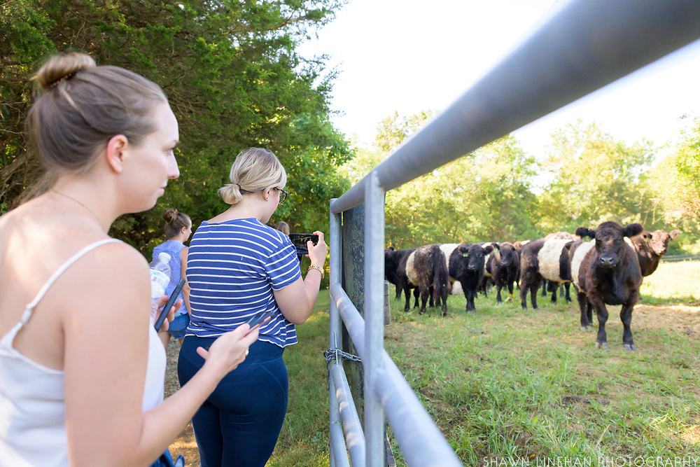 Congressional staffers meet with a grass fed cattle farmer to learn more about value added goods on a farm tour given by the NASDA Foundation.