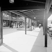 0001-F70-07. Feldman building,Phoenix, Arizona. March 7, 1957.