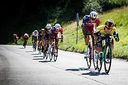 Primoz Roglic during Slovenian Road Cyling Championship 2019 on June 30, 2019 in Radovljica, Slovenia. Photo by Peter Podobnik / Sportida.