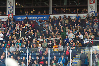 KELOWNA, CANADA - MARCH 13: Fans react to a a penalty call on March 13, 2019 at Prospera Place in Kelowna, British Columbia, Canada.  (Photo by Marissa Baecker/Shoot the Breeze)