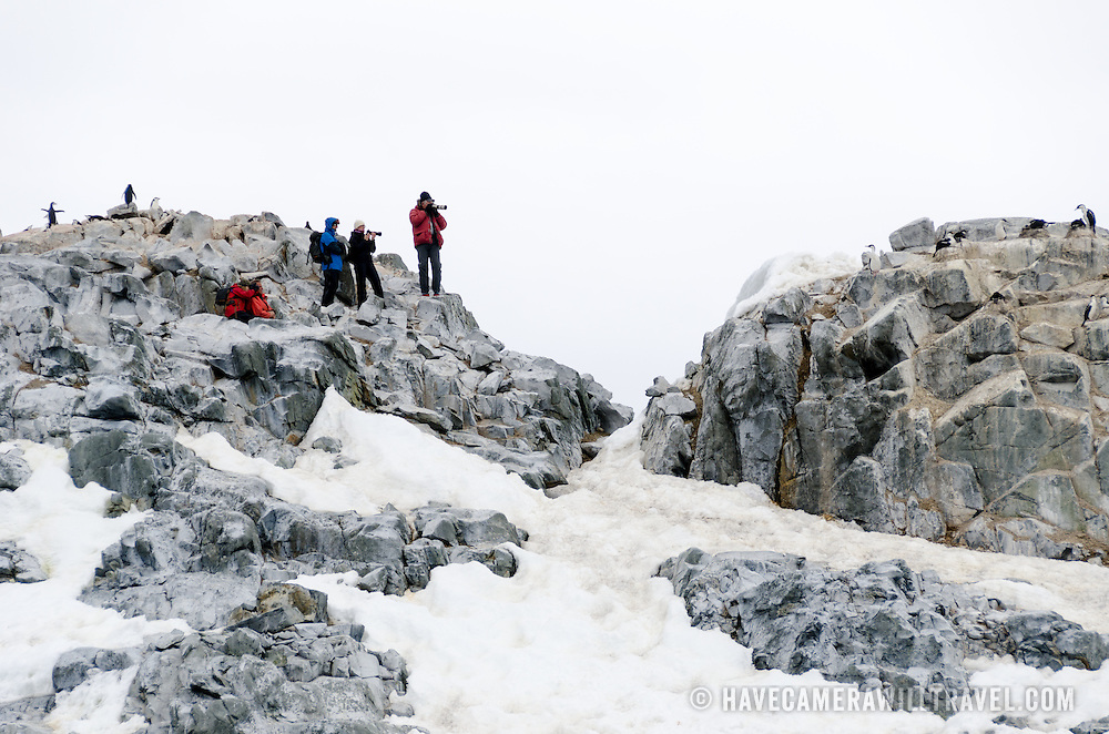 Photographers with telephoto lenses face off against shags nesting on rocks on Two Hummock Island on the Antarctic Peninsula.