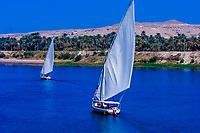 Feluccas on the Nile River near Aswan, Egypt