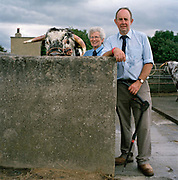 Eileen Hallifield and her husband, Richard, own Dunstall Hector, a two-year-old Longhorn bull. He has had conditioner added to the last lot of water, to keep his coat from drying out. 'They come to like the grooming because it makes their coat so nice and clean,' Hallifield says. 'It would feel nice, wouldn't it? They are like one of the family, although they are not a pet like a cat or a dog because eventually they have to go,' Hallifield adds. Dunstall Hector has since been sold for breeding, but the Hallifields  will have a framed portrait of him in their living-room. The hairdryers are out and the shampoo is flowing at the Great Yorkshire Show, one of Britain's biggest agricultural shows. Its famous for its competitive displays of livestock. The event, established in 1837, attracts over 125 000 visitors a year and has over 10 000 entries to its pedigree competitions ranging from pigeons and rabbits to bulls and shire horses..At the heart of the show is the passion of the exhibitors who spend hundreds of hours ( and pounds)  training, preparing and grooming their animals.