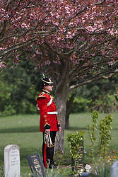 © Licensed to London News Pictures. 19/04/2012. DIDCOT, UK. A bugler waits to play the Last Post  at the funeral of Lance Corporal Michael Foley, Adjutant General's Corps (Staff and Personnel Support). Foley was shot dead by an Afghan soldier on March 26. He is survived by his wife Sophie (not pictured) and their three young sons who did not attend the service. Photo credit :  Cliff Hide/LNP