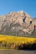 Pyramid Peak and autumn aspens in Jasper National Park