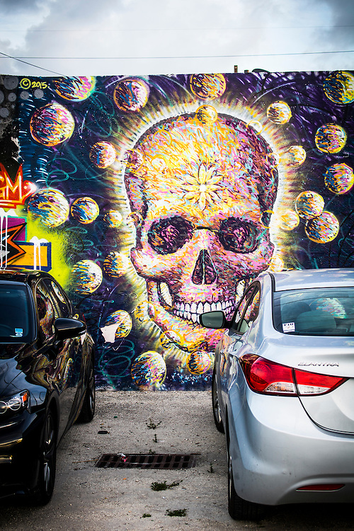 Skull mural on parking lot wall in the former RC Cola bottling plant in Miami's Wynwood district.