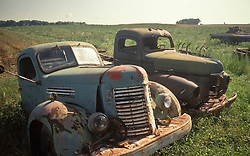 abandoned decaying rusting trucks in country field.