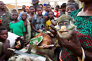 The head of a Red Tailed Guenon (Cercopithecus ascanius) is displayed for sale at a bush meat market in Oshwe, DRC, May 18, 2009. ©Daniel Beltra