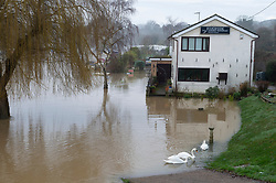 © Licensed to London News Pictures 28/12/2020.        Wateringbury, UK. The Riverside Restaurant surrounded by water. The River Medway in Kent has burst its banks in Wateringbury near the Medway Wharf Marina. Photo credit:Grant Falvey/LNP