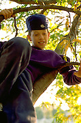 Hispanic boy age 12 sitting in a tree at Dunning Park.  St Paul  Minnesota USA