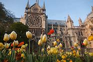 Spring in Paris. Printemps in Paris PR433A