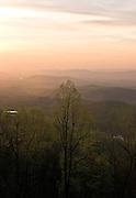 Sunrise behind a tree on the blue ridge parkway.