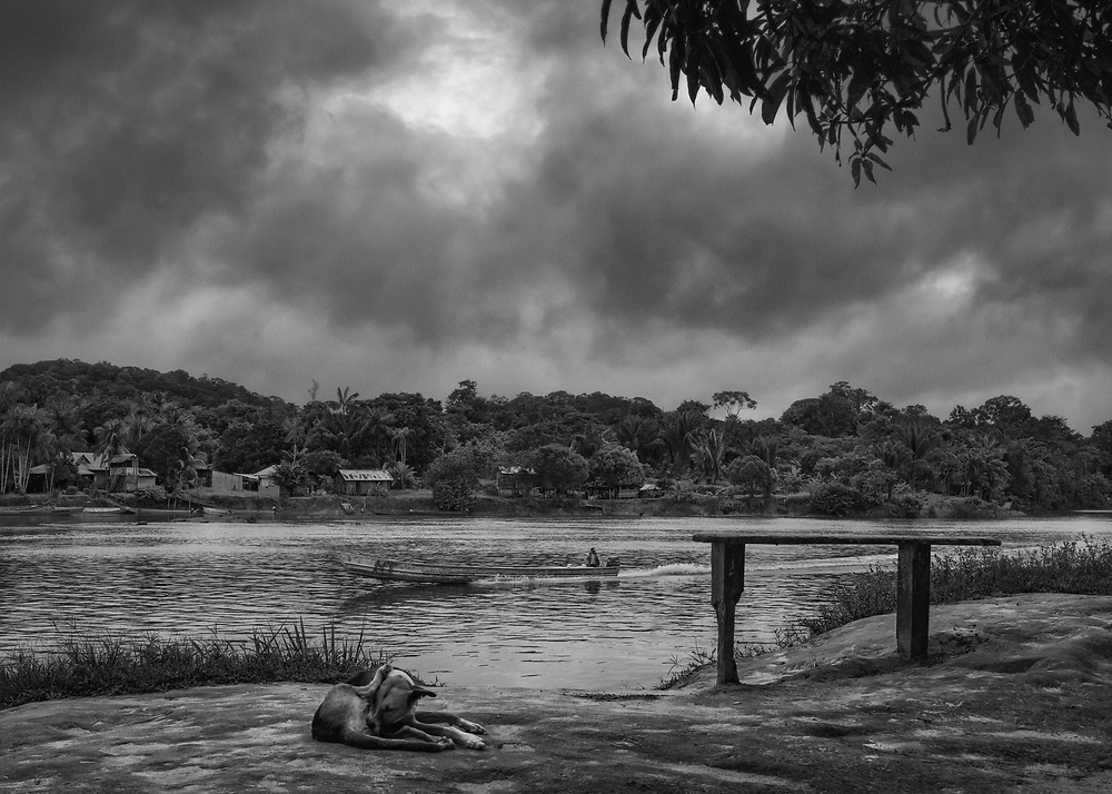 Vila Brasil, Brésil, 2015.<br /> <br /> Camopi fait face à Vila Brasil situé sur une presqu'ile de la rive opposée de l'Oyapock. Ce village brésilien à l'origine clandestin, sans aucune structure administrative est devenu un district d'Oiapoque depuis 2011. Il n'y pas d'eau courante et pas de route d'accès. Pourtant, ses habitants ont créé leur propre système qui fonctionne parfaitement et parfois mieux qu'à Camopi. Contrairement au bourg guyanais où il n'y a rien, ici on trouve tout ce qu'il faut.<br /> <br /> Construit dans un premier temps pour alimenter les sites d'orpaillages illégaux, ce comptoir vit maintenant de l'argent dépensé par les Amérindiens de la commune et s'endort entre deux périodes d'allocation. Le fret arrive alors quotidiennement d'Oiapoque par pirogue, les commerces et les restaurants font le plein.<br /> <br /> L'argent des amérindiens d'abord dépensé pour les fournitures scolaires et les vêtements des enfants est ensuite surtout destiné à l'achat d'alcools divers, de nourriture en boite et d'objets de pacotille exotiques à des tarifs dignes de la prohibition. Certains vont même jusqu'à vendre du poisson ou du gibier aux amérindiens.<br /> <br /> Les habitants du bourg viennent s'y approvisionner et s'y enivrer en voisins, ceux des villages distants, après avoir fait le plein de produits de première nécessité y résident quelques jours, le temps de dépenser leurs salaires, avant de repartir titubants vers leurs pirogues.