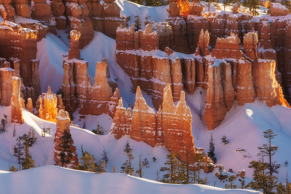 Warm glowing light on the snow covered hoodoos in Bryce Canyon National Park, Utah winter