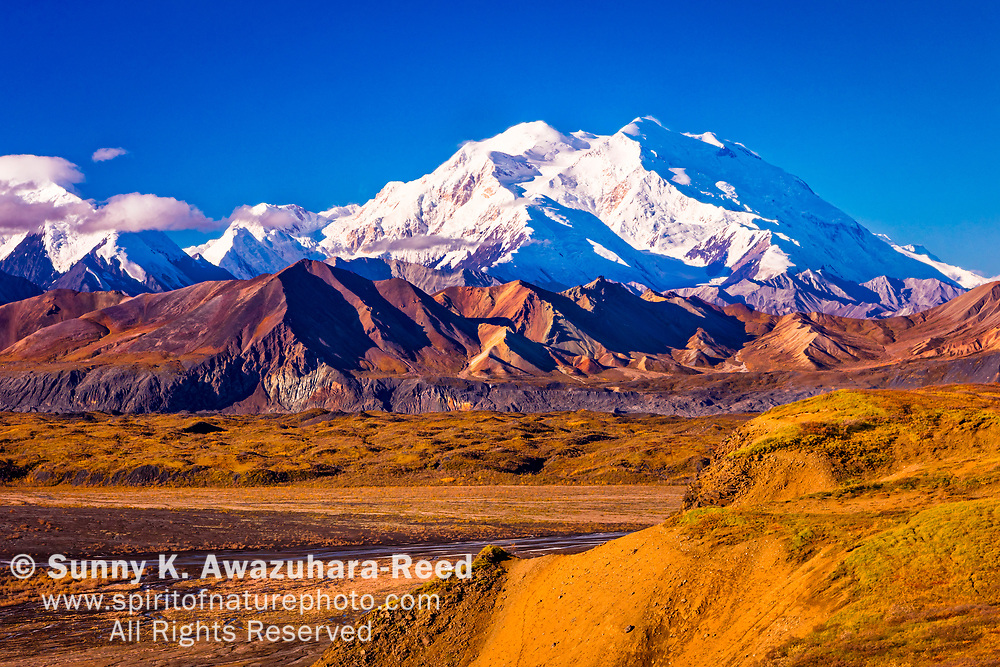 Close up of Mount Denali (McKinley) and Muldrow Glacier, viewed from Eielson Bluffs, Denali National Park & Preserve, Alaska, Autumn.
