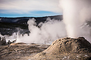 Lion Geyser and Little Cub erupting, Yellowstone National Park