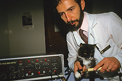Electronic Therapy On Cat