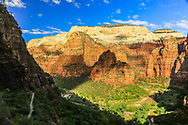 View of Angels Landing, looking across Zion Canyon from East Rim. In the distance, Cathedral Mountain towers above all. Just below Cathedral Mountain, left of center and in bright morning sunshine, is Angels Landing. Dead center and in the shadow of the East Rim is The Organ. Photo taken May 11, 2016, on hike to Observation Point, by way of Weeping Rock Trail. Zion shuttle buses visible bottom of photo.