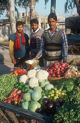 Road side vegetable stall in India selling onions; carrots; cabbages; cauliflowers; peas; tomatoes; peppers,