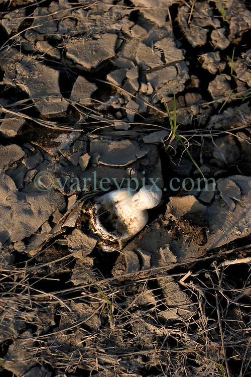 30 Sept, 2005.  New Orleans, Louisiana. Lower 9th ward. Hurricane Katrina aftermath. <br /> The remnants of the lives of ordinary folks, now covered in mud as the flood waters recede. A small china Buddah lies stuck in the muck.<br /> Photo; ©Charlie Varley/varleypix.com