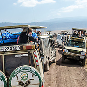 A group of safari vehicles creates a traffic jam as the drivers all stop next to an eagle feeding at Ngorongoro Crater in the Ngorongoro Conservation Area, part of Tanzania's northern circuit of national parks and nature preserves.