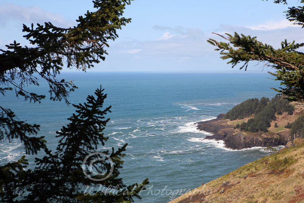 View from Cape Foulweather