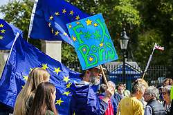 "© Licensed to London News Pictures. 07/09/2019. London, UK. An anti-Brexit protester with a placard takes part in ""Defend our Democracy and Stop Brexit"" demonstration in Whitehall, Westminster. The protesters are demonstrating against the British Prime Minister Boris Johnson's intention to prorogue Parliament until 14 October. Photo credit: Dinendra Haria/LNP"