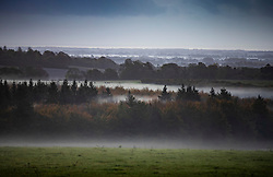 © Licensed to London News Pictures. 04/11/2019. Chichester, UK. Mist remains in parts of the south Downs near Chichester at dawn. Low pressure over the UK is bringing continued rain showers. Photo credit: Peter Macdiarmid/LNP