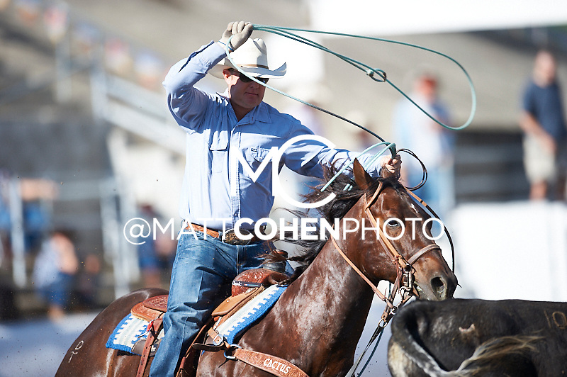 Team roper Brady Minor of Ellensburg competes at the Clovis Rodeo in Clovis, CA.<br /> <br /> <br /> UNEDITED LOW-RES PREVIEW<br /> <br /> <br /> File shown may be an unedited low resolution version used as a proof only. All prints are 100% guaranteed for quality. Sizes 8x10+ come with a version for personal social media. I am currently not selling downloads for commercial/brand use.