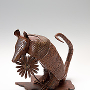 Title: Armadillo<br /> Artist: Sarah Stork <br /> Date: 2016<br /> Medium: Steel<br /> Awards: Second Place in Sculpture -  40th Annual Student Art Exhibition, 2016 President's Award<br /> Status: On Display<br /> Location: ACC President's Office Suite, HBC 501